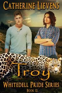 troy300