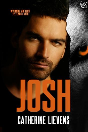 Josh300