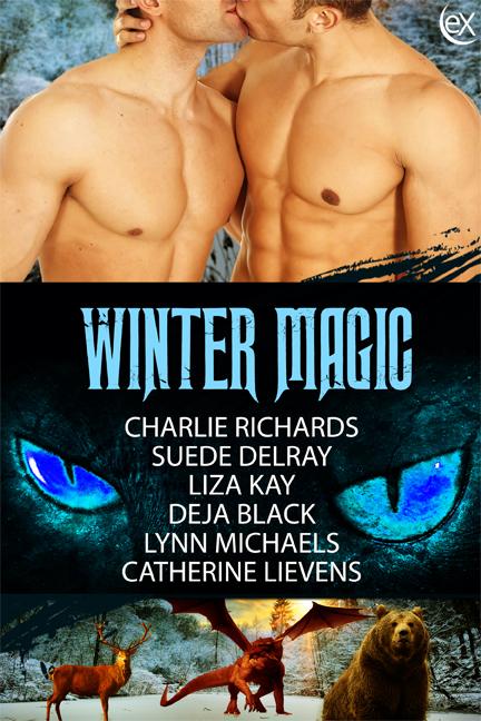 WinterMagic2D6x9