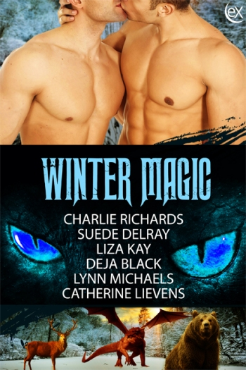 WinterMagic2D6x9