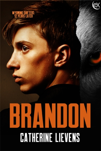 Brandon6x9