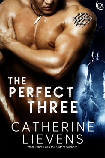 ThePerfectThree6x9