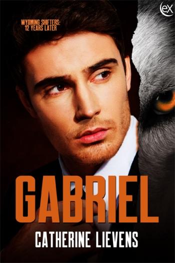 Gabriel6x9