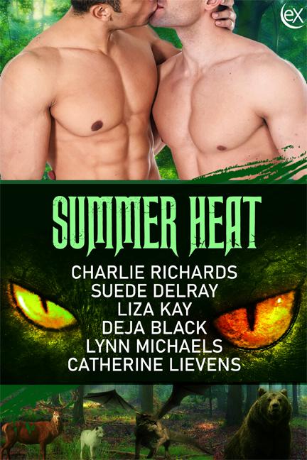 SummerHeat2D6x9