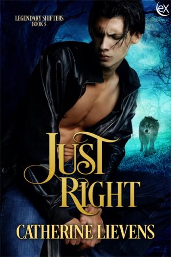 JustRight6x9